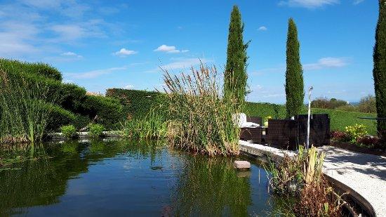Fleurie, Fransa: Le bassin et l'espace détente