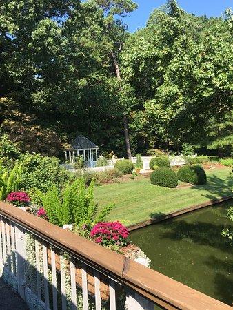 Norfolk Botanical Garden: The view from a garden bridge.