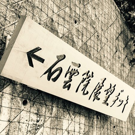 #07 Makinohara, Japan