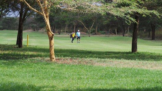 Usa, Tanzania: photo1.jpg