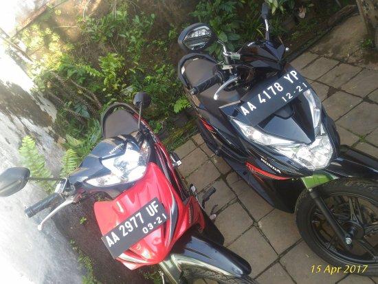 Wonosobo, Indonesien: Putra Wijaya Motorbike Rental