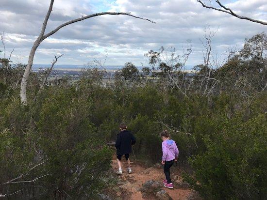 Wangaratta, Australia: photo4.jpg