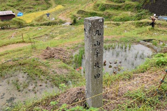 Maruyama Senmai Rice Field: 駐車場から