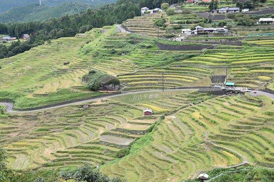 Maruyama Senmai Rice Field: 途中の展望場所より