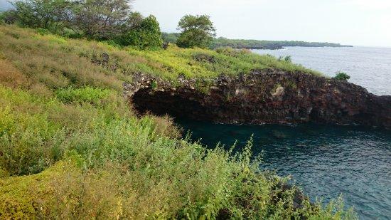 Honaunau, Havaí: 海岸線は多少のアップダウンあり