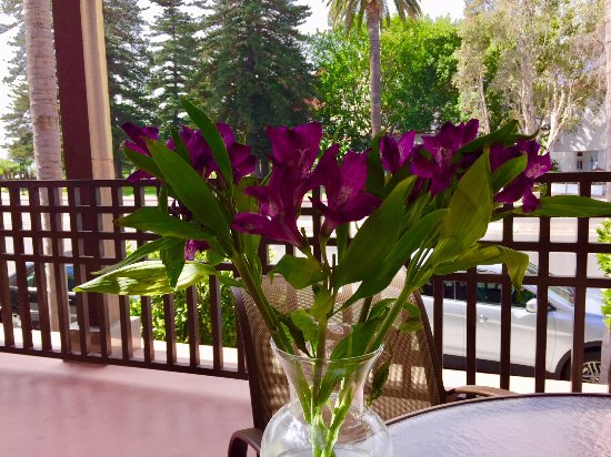 Coronado Beach Resort : Tribute flowers to my wife, she started our family vacations here