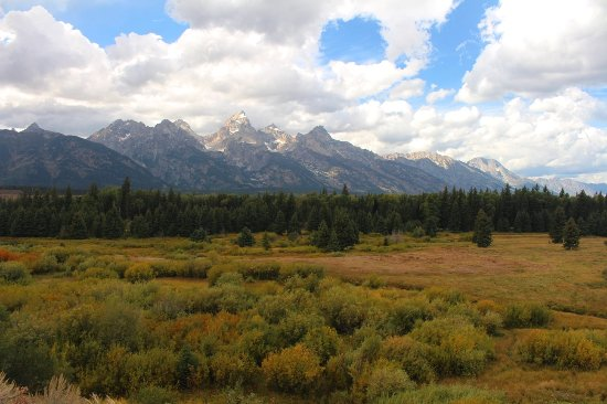 Moose, WY: Blacktail Ponds Overlook, Grand Teton National Park