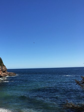 Perce, Canada: The beach where the seals hang out