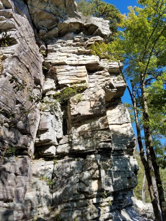 Pinnacle, NC: Pilot Mountain, Ledge Springs Trail