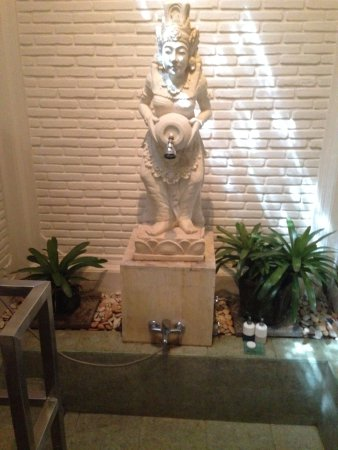 Tirta Ayu Hotel & Restaurant: The most amazing shower...