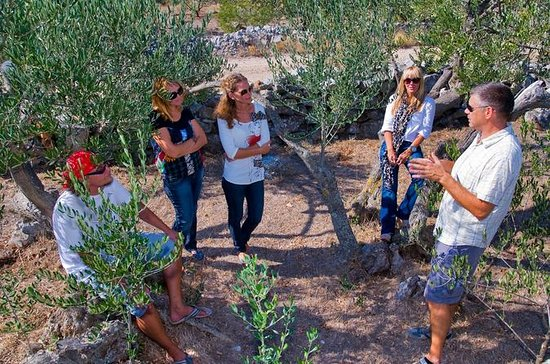 Olive Oil Tour of Solta Island with...