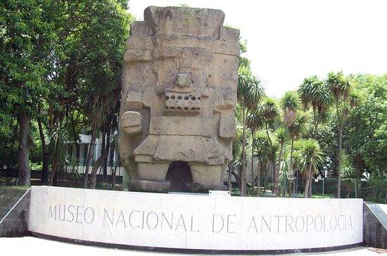 México antigo: passeio a pé pelo...