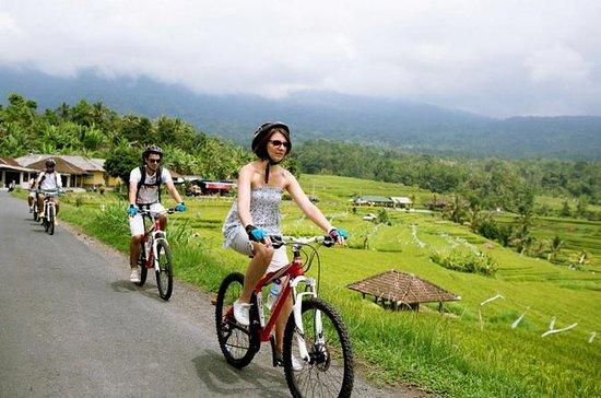 Jatiluwih Bali Unesco Rice Terraces...