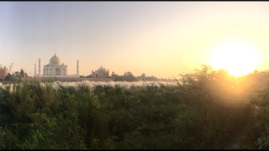 Indian Homestay: View of the Taj Mahal from the Mehtab Bagh