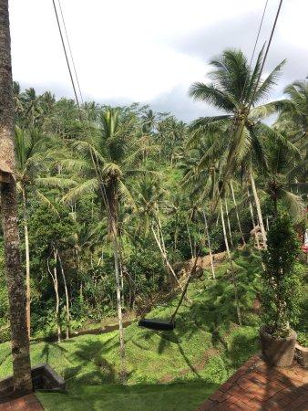Tegalalang, Indonezja: photo1.jpg