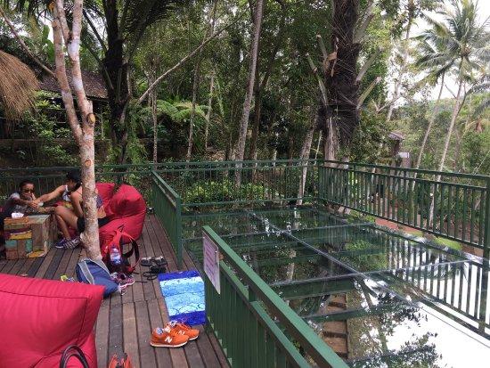 Tegalalang, Indonezja: photo2.jpg