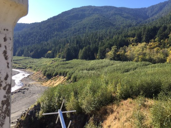 Port Angeles, Etat de Washington : With most of the dam concrete removed and lots of re-vegetation has given the salmon their first