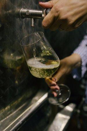 Trilj, Kroatië: Winery Krolo
