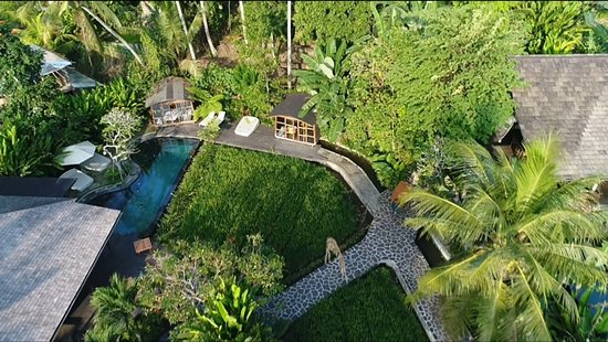 ‪‪Mas‬, إندونيسيا: Bidrseye view of the restaurant pool, ricefields and jungle‬