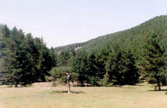 Kadipinari Tabiat Parki