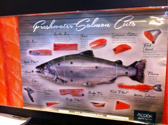 Twizel, Новая Зеландия: salmon information board inside the store