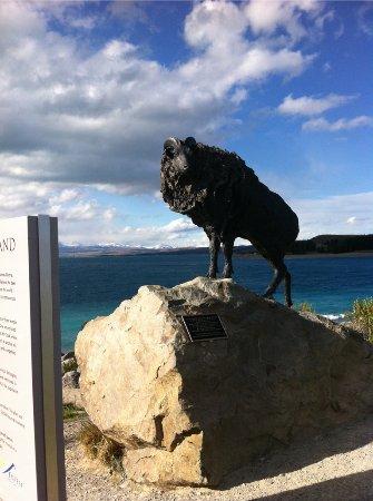 Twizel, Nieuw-Zeeland: tahr statue
