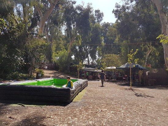 Indie Park