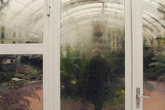 Brno, Czech Republic: Gewächshaus im Botanischen Garten