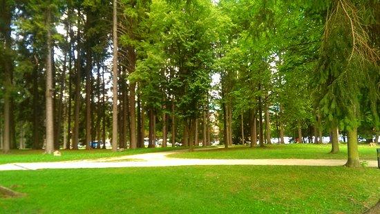 Parco Brigata Regina