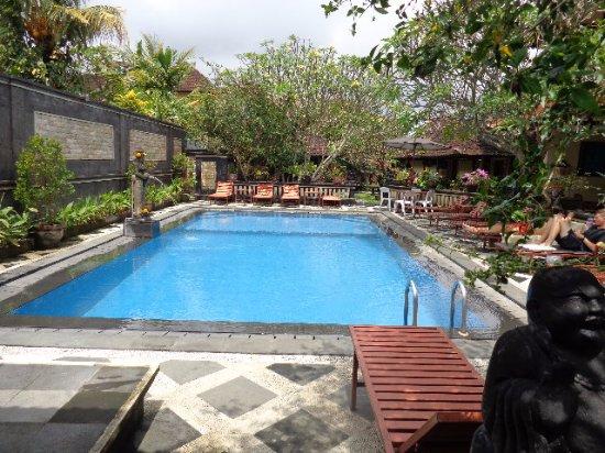 Sagitarius Inn: Pool