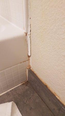 Gouesnou, Frankrike: Les joints autour de la douche moisis