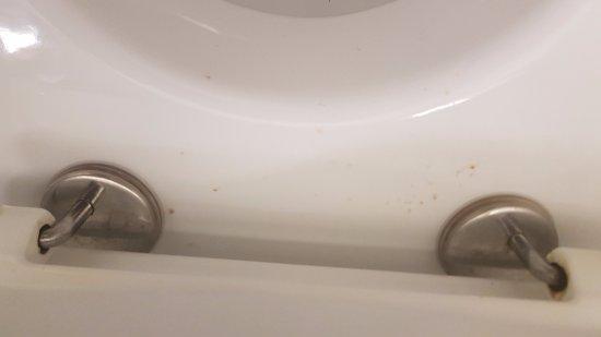 Gouesnou, Frankrike: Le bord des toilettes sale