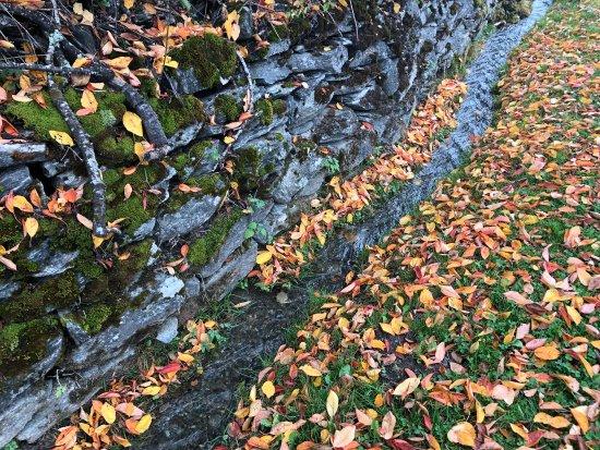 Grimentz, Switzerland: Beautiful Nature