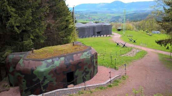 Trutnov, Czech Republic: Vraní hory in the background