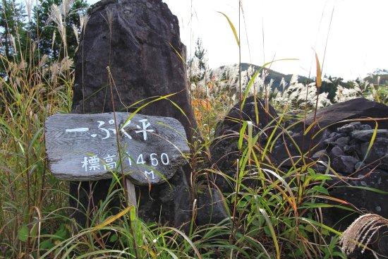 Gujo, Ιαπωνία: いっぷく平