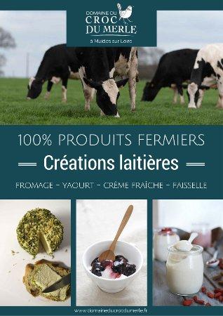 Muides sur Loire, Frankrike: Créations laitières produits fermiers