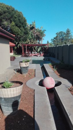 Singa Lodge: Pool
