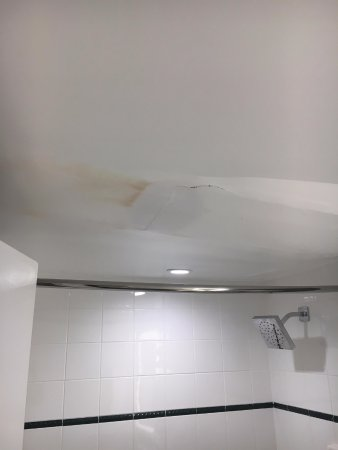 Bahia Mar Fort Lauderdale Beach - a Doubletree by Hilton Hotel: Sewage leaking from ceiling