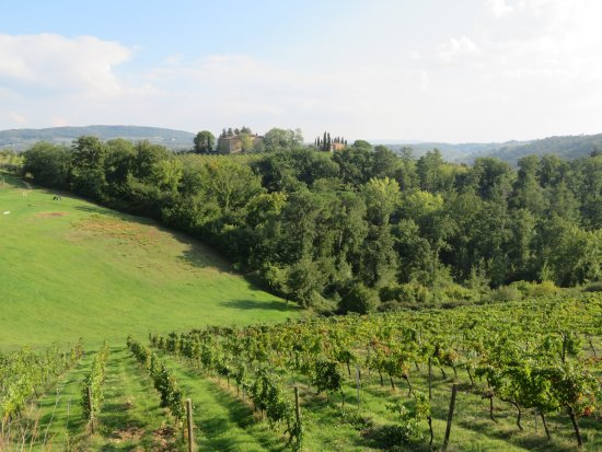 Salvadonica - Borgo Agrituristico del Chianti: Blick vom Hotelpool mit Liegen und Stühlen