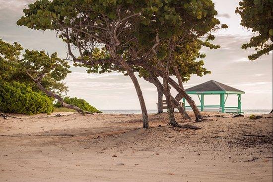 East End, Grand Cayman: Colliers beach cabana