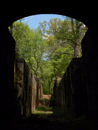 Landsford Canal State Park: an adventure to walk where once boats traveled