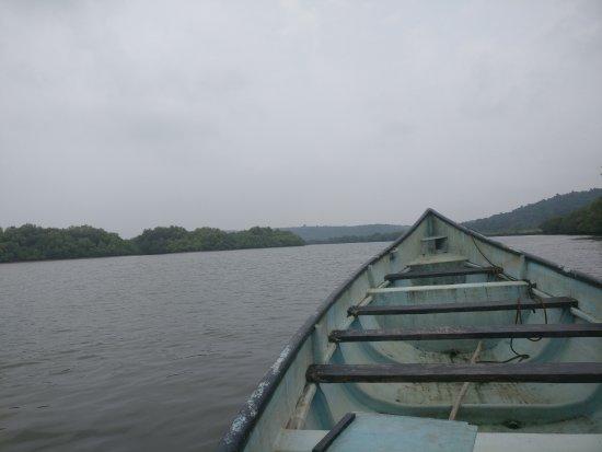 Dr. Salim Ali Bird Sanctuary: Our boat over-looking the Mandovi river