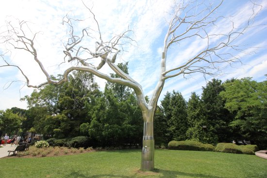 Rvore Picture Of National Gallery Of Art Sculpture Garden Washington Dc Tripadvisor