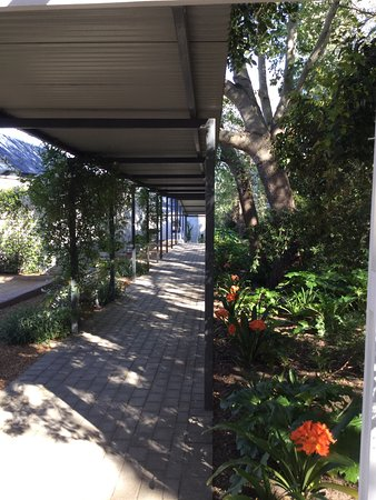 Lavender Farm Guest House Franschhoek: The gardens were pretty and well maintained