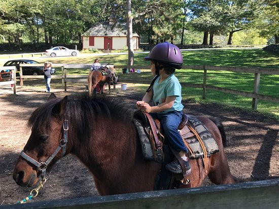 West Warwick, RI: Pony ride on Romeo