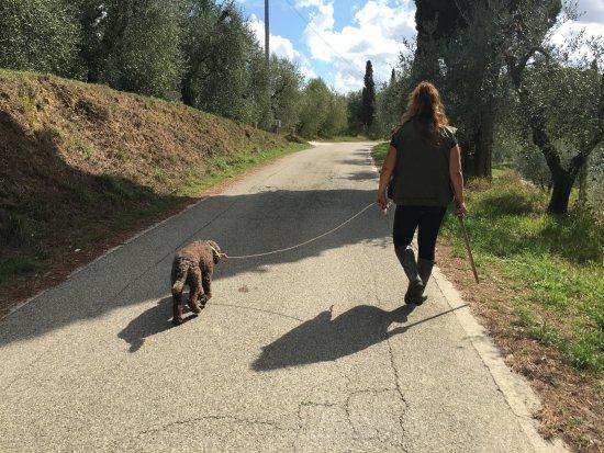 The Truffle Hunter : Francesca and Chaco