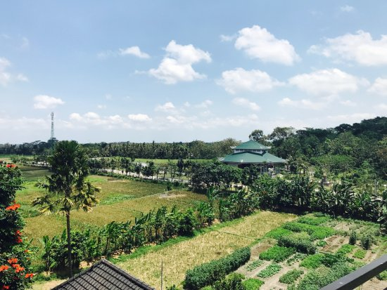 Terrace de l 39 h tel picture of anumana ubud hotel ubud for Terrace ubud bali