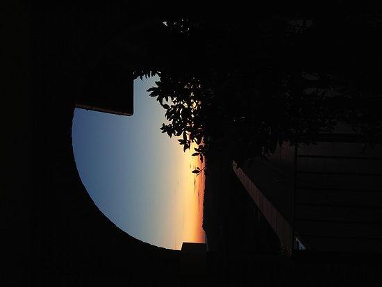 Poggio Murella, Italy: Vista dalla camera 109 by #ClipVideoService 🎬