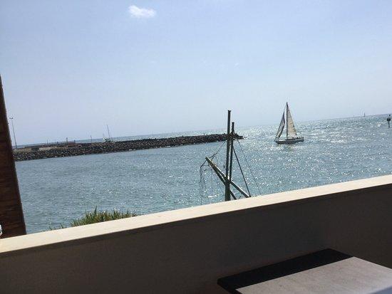 View from the terrace - Foto di Lilly Alla Fiumara, Fiumicino ...