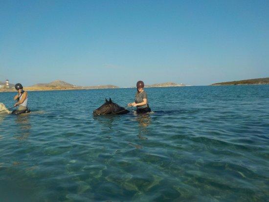 Νάουσα, Ελλάδα: Swimming!